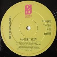 All Night Love / Disco Lights
