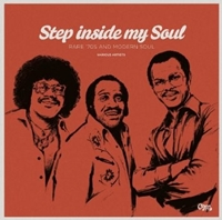 Step Inside My Soul - Rare 70'S And Modern Soul (180Gm)