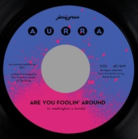 Are You Foolin' Around (Voc/Inst)