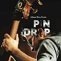 Pin Drop