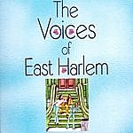 Voices Of East Harlem