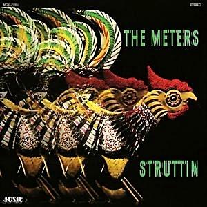 Struttin (180Gm)