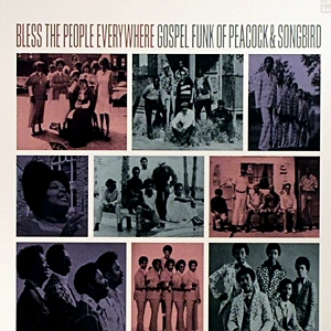 Bless The People Everywhere - Gospel Funk Of Peacock & Songbird