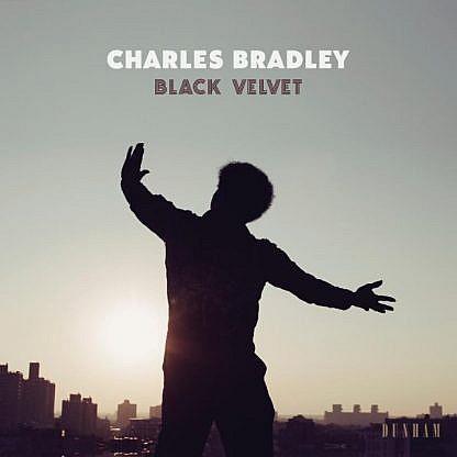 Black Velvet