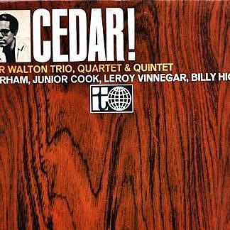 Cedar!