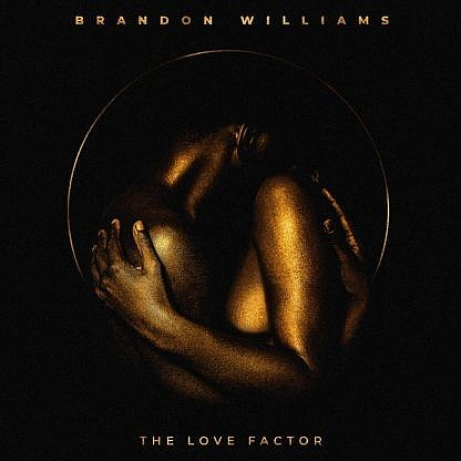 The Love Factor (pre-order: Due 18th September)
