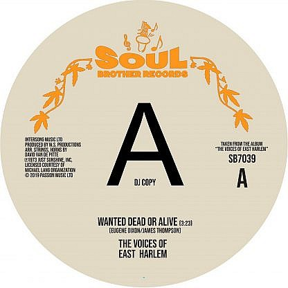 Wanted Dead Or Alive/Can You Feel It (Dj Copy)