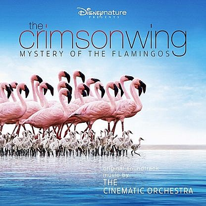 The Crimson Wing - Mystery Of The Flamingoes