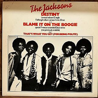 Blame It On The Boogie /Destiny
